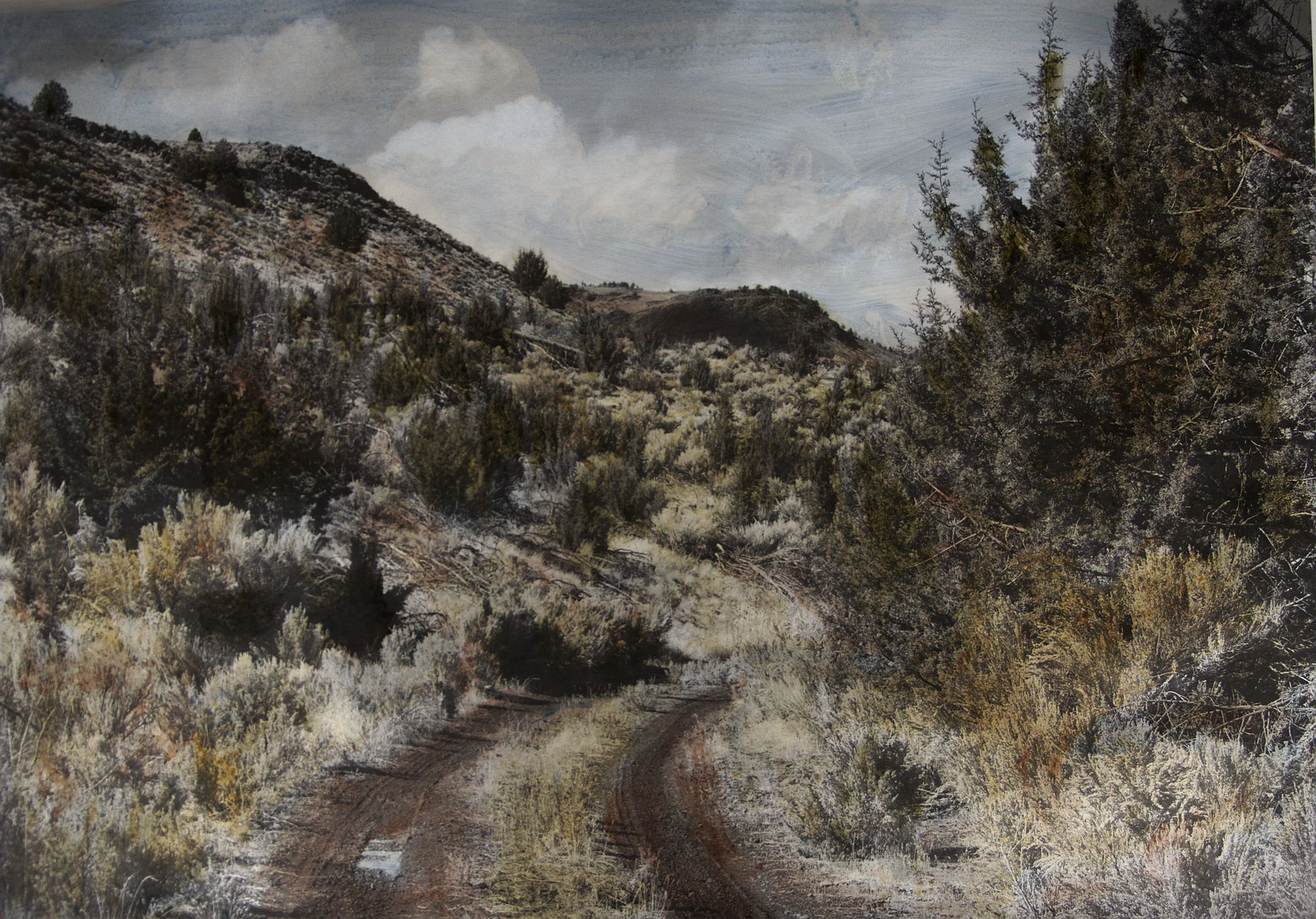 Road Near Frenchglen 2016.1 -- 22x30 inch hand colored photo